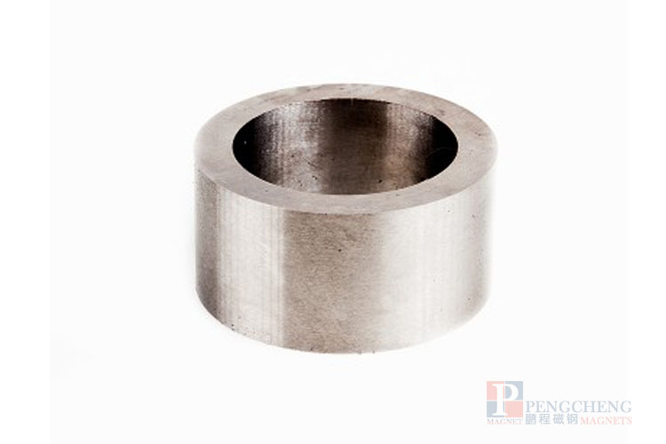 Magneet LNG12 AlNiCo Ring, PC-0054